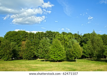 Green forest with blue sky and clouds on summer day - stock photo