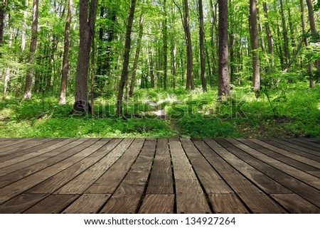 Green forest with wooden floor background