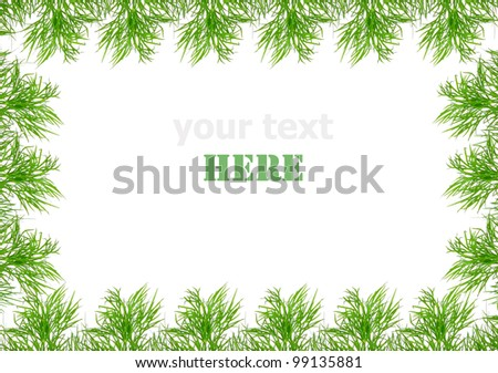 green frame made from fresh dill #99135881