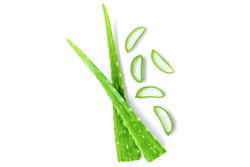 Green fresh aloe vera leaf with aloevera slice isolated on white background. Top view. Flat lay.