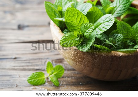 Shutterstock Green fresh mint om the wooden table, selective focus