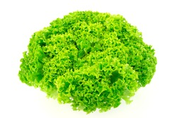 Green fresh salad lettuce isolated on white background.