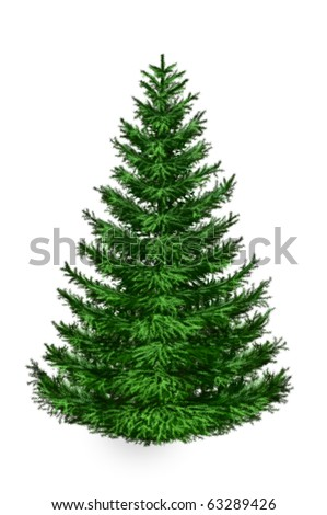 Green fur-tree covered, isolated. Christmas picture