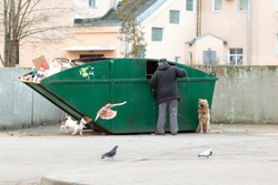 Green garbage container in the courtyard of the Russian city.A man is rummaging in a garbage container. A dog next to an elderly owner who is looking for something in the trash can.Green garbage conta