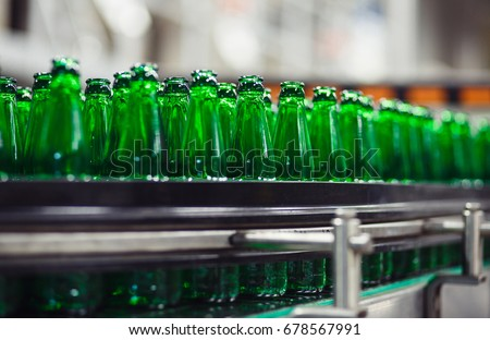 Green glass bottles without labels on the conveyor. Beer factory