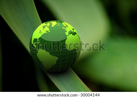 green globe on grass