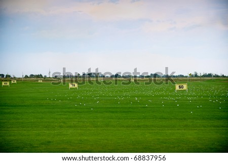 Green golf field in the summer time