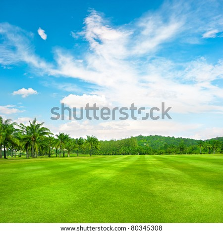 green golf field with palms over cloudy sky background - stock photo
