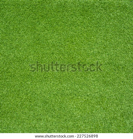 green grass - Shutterstock ID 227526898