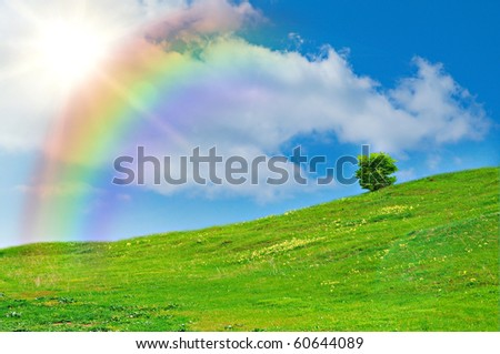 green grass against the blue sky with rainbow. nice background