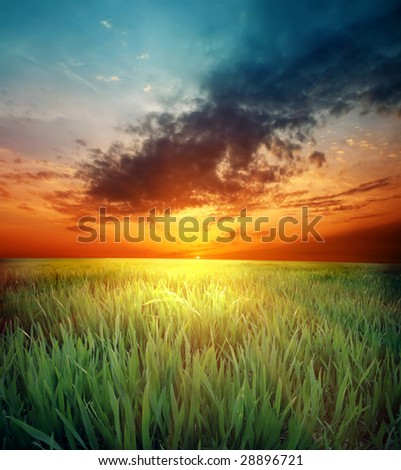 green grass and beautiful sunset #28896721