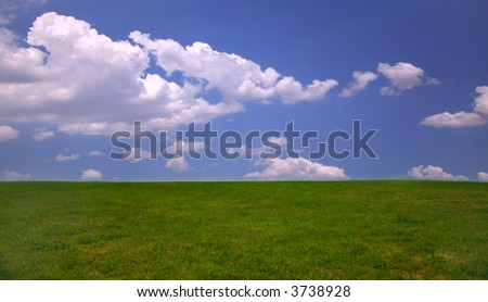 Green grass and blue sky background with copy space