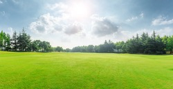 Green grass and blue sky with white clouds in summer season