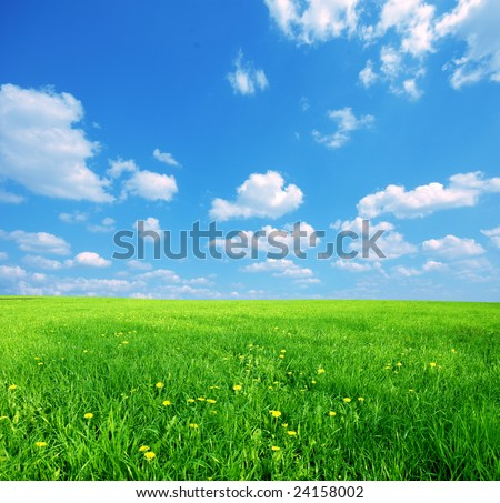 sunny skies wallpaper. and blue sunny sky spring