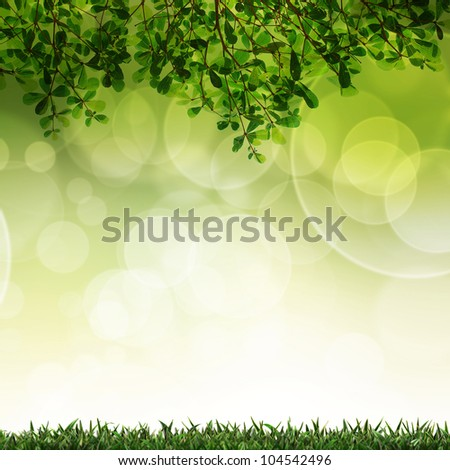 Green grass and leave background with selective focus