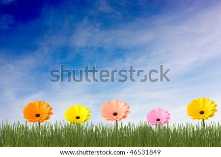 Green grass and multicolored flowers on a clouds background
