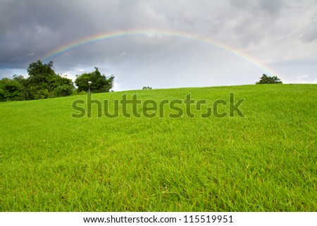 Green grass and real rainbow