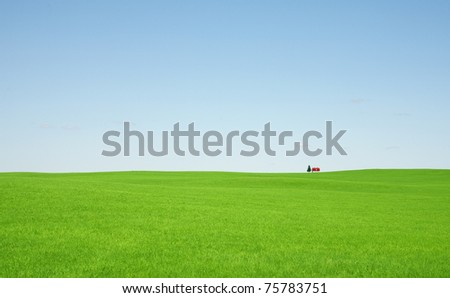 Green grass and red roof house