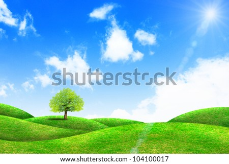 green grass and tree with bright blue sky