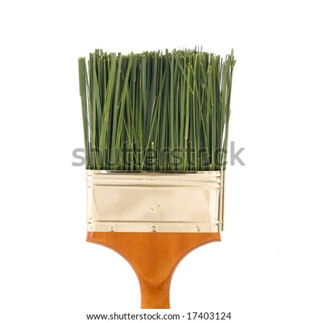 Green grass as bristles in a four inch paintbrush - nontoxic paint concept