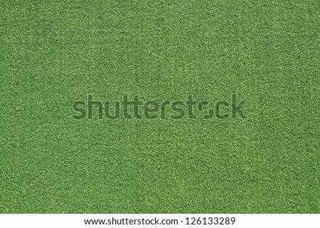 Green grass background and texture