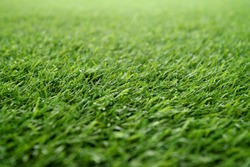 green grass background, artificial grass on soccer field
