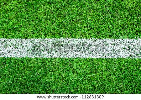 Green grass background (Soccer/Football field set)