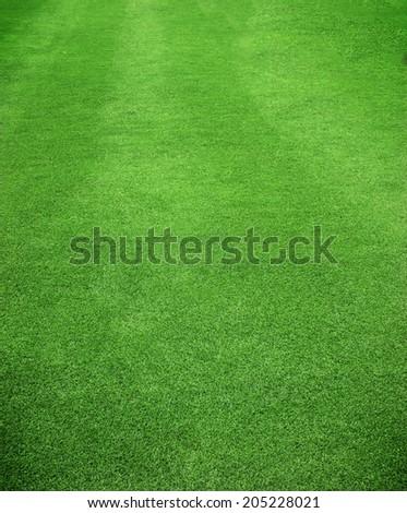 Green grass background texture. Football turf. - Shutterstock ID 205228021