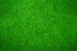 Green grass background vignette or the green nature wall texture Ideal for use in the design fairly.