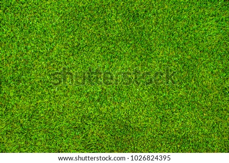 Green grass background vignette or the naturally walls texture Ideal for use in the design fairly. - Shutterstock ID 1026824395