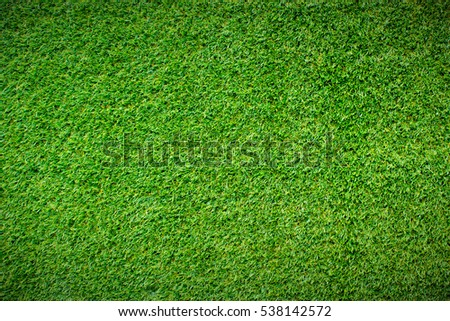Green grass background vignette or the naturally walls texture Ideal for use in the design fairly. - Shutterstock ID 538142572