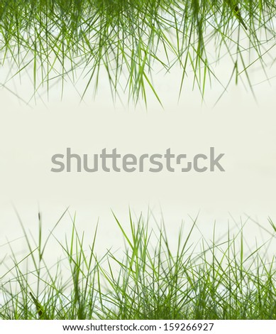 green grass background with copy space,material for designer