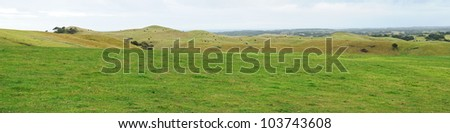 Green grass, black cows on hills, trees and cloudy sky panorama at Mornington Peninsula, Victoria, Australia