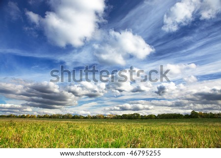 Green grass, blue sky and white clouds