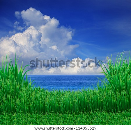 green grass field and sea sky white cloud