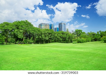 green grass field in big city park ストックフォト ©
