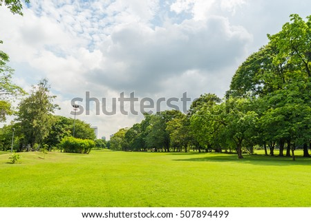 Stock Photo green grass field in big city park