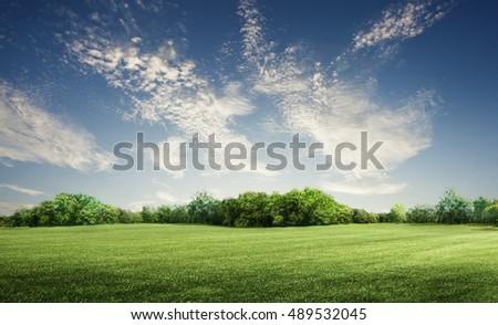 green grass field in big garden