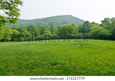 green grass field in  city park  #172227779