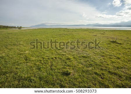 green grass field in the park #508293373