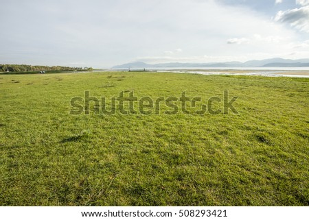 green grass field in the park #508293421