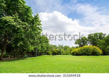 green grass field in tree city park with blue sky. #315044918