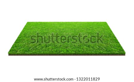 Green grass field isolated on white with clipping path. Artificial lawn grass carpet for sport background. Background for landscape, park and outdoor. #1322011829