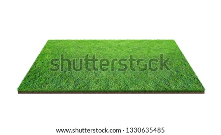 Green grass field isolated on white with clipping path. Artificial lawn grass carpet for sport background. Background for landscape, park and outdoor. #1330635485