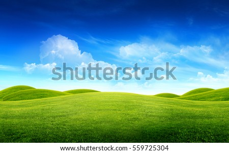 Green grass field on small hills and blue sky with clouds #559725304