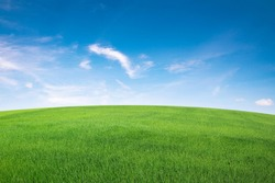 green grass field with blue sky ad white cloud. nature landscape background