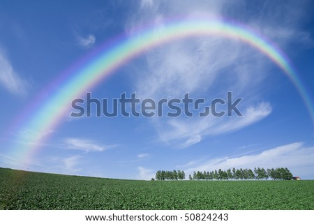 Green grass field with rainbow in the background - stock photo