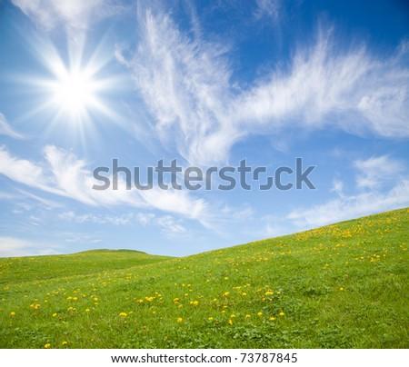 [Obrazek: stock-photo-green-grass-field-with-yello...787845.jpg]