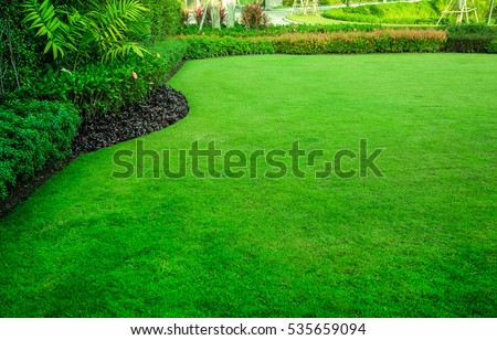 Green grass,garden landscape design