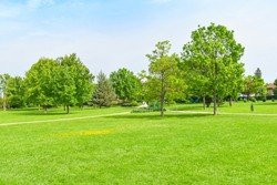 Green grass green trees in the  beautiful park with white Cloud blue sky in noon. - Image